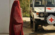 الصليب الأحمر: أعداد الضحايا بين صفوف المدنيين مازالت كبيرة للغاية