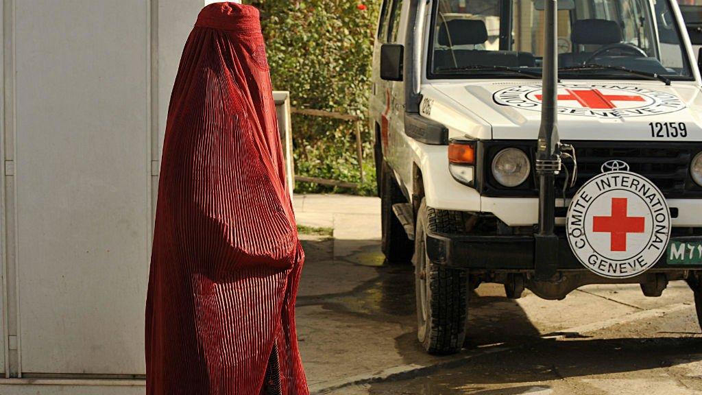 الصليب الأحمر - الصليب الأحمر: أعداد الضحايا بين صفوف المدنيين مازالت كبيرة للغاية