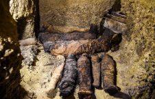 4928 226x145 - Ptolemaic Era Mummies Unearthed
