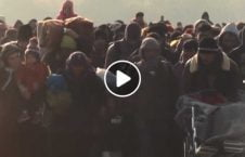 the story refugees displaced people 226x145 - The Story of Refugees and Displaced people