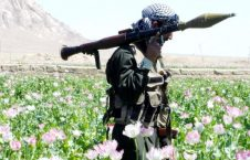 110983807 gettyimages 57065155 226x145 - US and Taliban Started a Temporary Truce