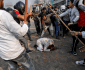 India's Muslims in Grave Danger and Suffer, 45 Dead