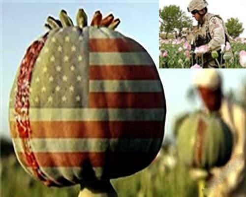 ګالوف : په افغانستان کی د امریکا استخباراتي غړی نشه یي توکي قاچاقوي