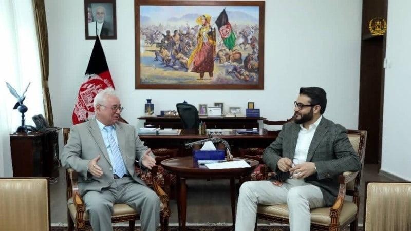 دافغانستان دسولې په بهیرکی