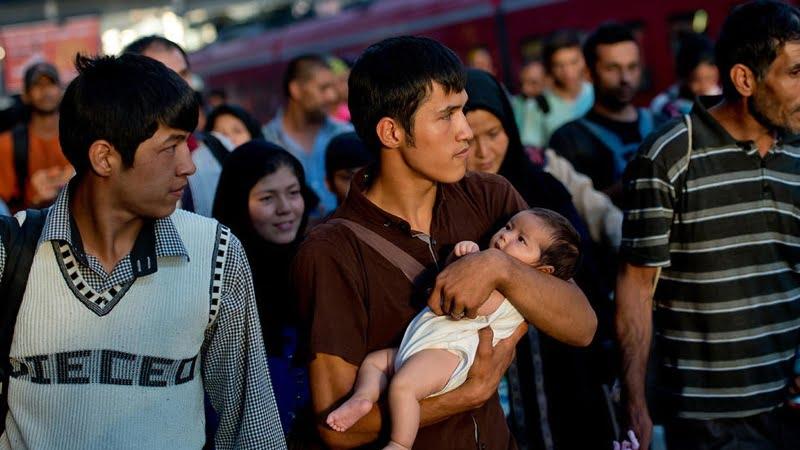 دجرمنی څخه دیوشمیر افغان پناه غوښتونکی ایستل