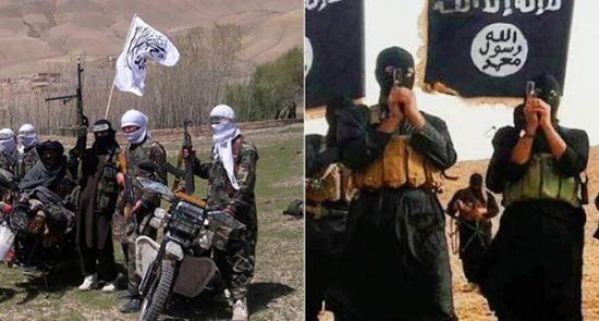 د داعش په ماتې کې طالبانو هم رول