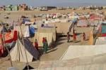 بیجا شده 150x100 - آواره گی 1000 خانواده در فاریاب