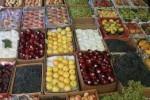 حاصلات میوه بلخ 150x100 - افزایش سطح حاصلات میوه بلخ