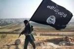 داعشی 150x100 - وهابی ها داعشی هستند