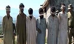 طالبان - دستگیری چندین شورشی در ولایت غزنی