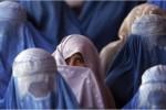 زنان3 150x100 - افزایش خشونت های جنسی علیه زنان در شمال کشور
