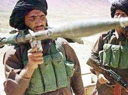 کشته شدن دهها تن از شورشیان مخالف مسلح دولت در ولایت کاپیسا