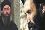 طالبان و داعش 150x100 - تجمع دشمنان و مخالفان ایران در افغانستان!