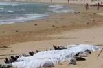 غرق1 150x100 - غرق شدن سه مهاجر افغان در آب های یونان