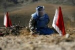 ماین 1 150x100 - کمک ۲ میلیون دالری کوریای جنوبی با افغانستان