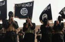 2 226x145 - داعش در حال سقوط است...
