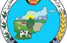امضای قرارداد اعمار ۱۷ کانال توسط وزارت زراعت