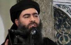 ابوبکر البغدادی 226x145 - از ابوبکر البغدادی چه خبر؟!