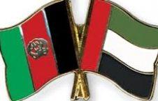 امارات 226x145 - دیدار وزیرمالیه با سفیرامارات متحده عرب