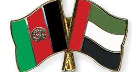 امارات - دیدار وزیرمالیه با سفیرامارات متحده عرب