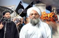 القاعده و داعش 226x145 - علاقه شدید سران القاعده و داعش به اظهارات ترمپ