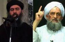داعش و القاعده 226x145 - داعش و القاعده؛ حامیانِ عربستان در جنگ یمن!