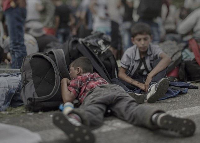 پناهجو 1