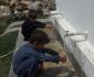 تامین آب آشامیدنی برای باشندگان ولسوالی های پکتیا