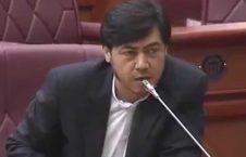 دفاع جانانه جعفر مهدوی از جنبش روشنایی در پارلمان