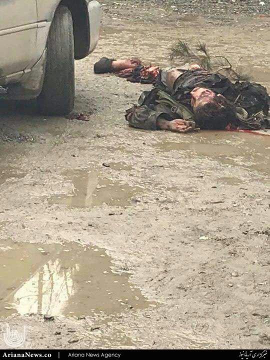 انتحاری کابل 3 - تصویر عامل انتحاری امروز در کابل
