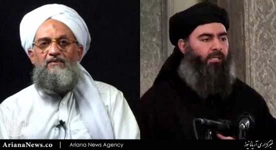 داعش و القاعده