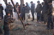 حمله انتحاری کابل 7