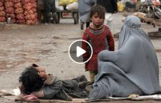 خانه به دوشان افغان