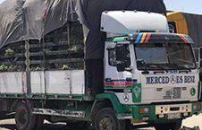 کمک های ترکمنستان به هرات رسید