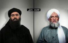 القاعده 226x145 - اعلام ممنوعیت فعالیت های داعش و القاعده از سوی وزارت امور داخله هند