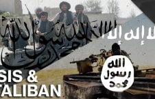 طالبان 226x145 - حمایت هوایی امریکا از داعش در برابر طالبان