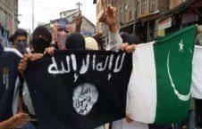 داعش پاکستان 226x145 - توسعه شبکه های داعش در ایالت بلوچستان پاکستان