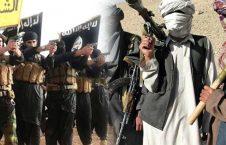 طالبان داعش 226x145 - پاسخ کوبنده طالبان به جولان داعش در کنر!