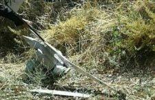 طیاره بی پیلوت 1 226x145 - اردوی سوریه طیاره بی پیلوت اسراییلی را هدف قرار داد