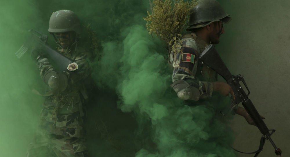 عملیات - کشته شدن شماری از تروریستان شبکه حقانی در ولایت پکتیکا