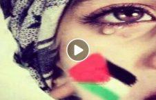 ویدیو فلسطین می گرید 226x145 - ویدیو/ فلسطین می گرید