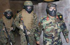 کماندو 226x145 - عملیات شاهین یک در ولایت غزنی ادامه دارد