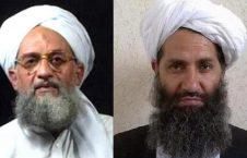 القاعده طالبان 226x145 - جهاد، پیوند دهنده طالبان به القاعده