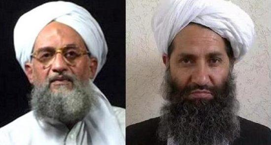 القاعده طالبان 550x295 - امارت اسلامی طالبان بخش اصلی خلافت جدید القاعده!؟