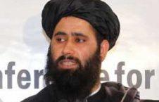 ذبیح الله مجاهد 226x145 - ذبیح الله مجاهد از حمله افراد طالبان به ولایت کنر خبر داد