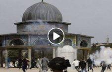 ویدیو حمله صهیونیست مسجدالاقصی 226x145 - ویدیو/ حمله صهیونیستها به نمازگزاران فلسطینی در مسجدالاقصی