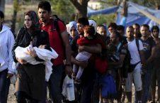 پناهنده 226x145 - رفتار اروپا با پناهنده گان چگونه است؟!