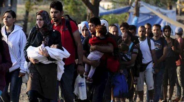 پناهنده - اخراج ۲۰۰ پناهجوی افغان از سویس