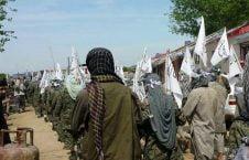 طالبان 226x145 - کشته و زخمی شدن 30 طالب در بغلان
