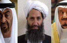 هبت الله ملک سلمان بن زاید 226x145 - هشدار شدید الحن رهبر طالبان به عربستان و امارات